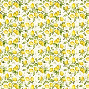 Lemon Blossoms, Mini on Ivory