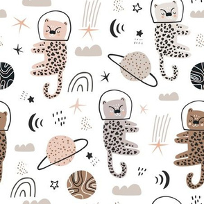 Cheetahs in space