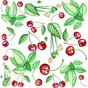 Cherries_and_Leaves