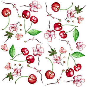 Cherries_And_Blossoms