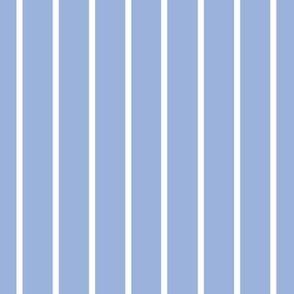Sky blue with narrow white stripe (small)