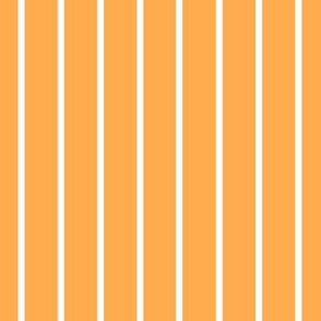 Orange with narrow white stripe (small)