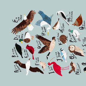 "An Alphabet of Birds 18x27"" Fat Quarter Tea Towel"