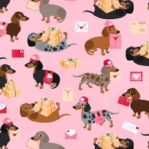 Special Delivery Dachshunds - Pink All Coats