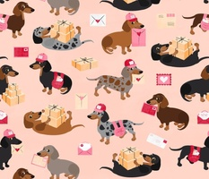 Special Delivery Dachshunds - Peach All Coats