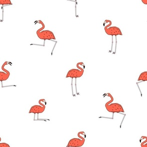 Pink peach flamingos isolated on white background