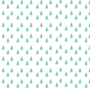 Tiny Evergreen forest
