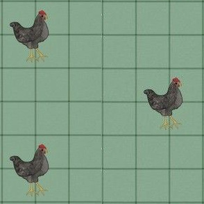 Chickens on Green Squares