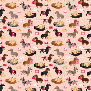 Special Delivery Dachshunds - Peach All Coats Small Scale