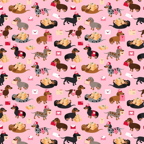 Special Delivery Dachshunds - Pink All Coats Small Scale