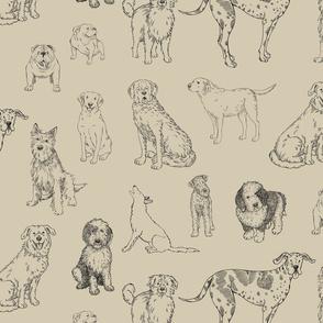 Big Dog Line Art on khaki