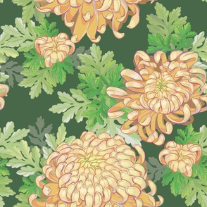 Peach Chrysanthemum