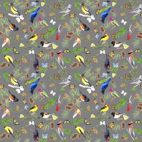 BirdsButterfliesEvergeens - midgray