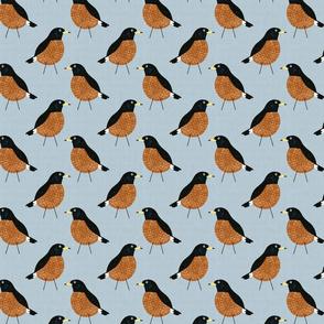 Bird Alphabet - R is for Robin