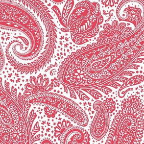 small Paisley Positivity red 2