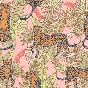 Cheetah Safari