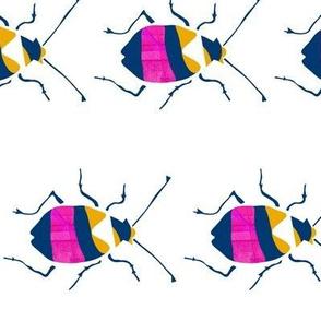 Pink Yellow Tigerbeetle