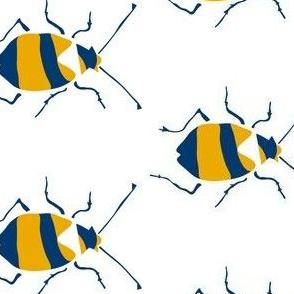 Yellow Tigerbeetle
