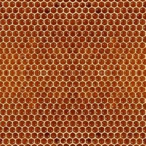 Endless Honeycomb
