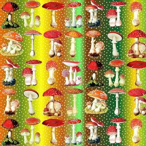Toadstools and dots on autumn rainbow ground