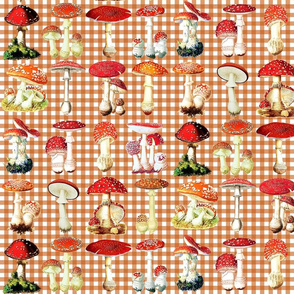 Toadstools on autumn brown gingham