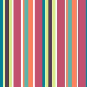 Multicolour stripes-nanditasingh