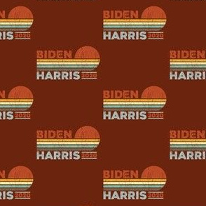 Retro Biden Harris