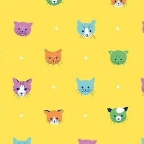 Cats & dots