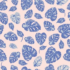 Tropicana Variegated Monstera in blue on pink