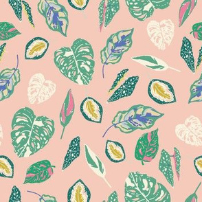 Tropical houseplants in green on pink