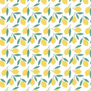 Fresh summer Lemon tree