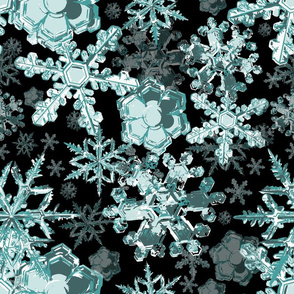 microscopic icecrystals mint and black