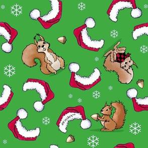 Christmas Squirrels Larger Print