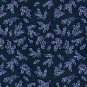 Blue-Christmas-fir-2-small-maeby-wild