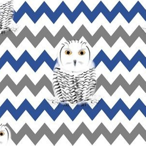 Arctic Owls on Blue and Grey Chevrons