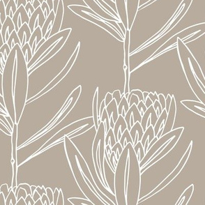 Protea  Large - Truffle
