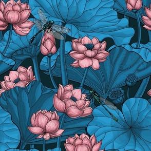 Night lotus garden, pink and blue