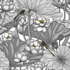 White Lotus garden, gray and yellow