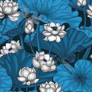 Night lotus garden, white and blue