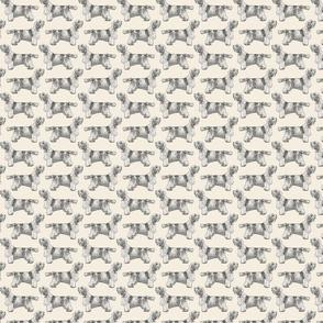 Small Standing Petit Basset Griffon Vendeen - sepia