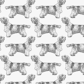 Standing Petit Basset Griffon Vendeen - gray