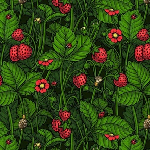 Wild strawberries, red and green 2