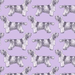 Standing Petit Basset Griffon Vendeen - purple