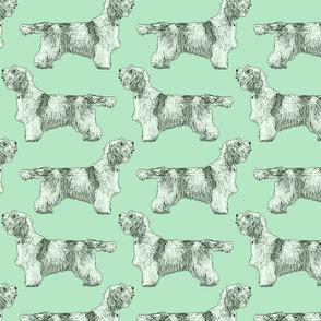 Standing Petit Basset Griffon Vendeen - green