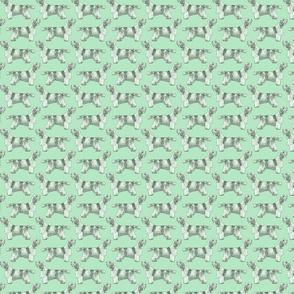 Small Standing Petit Basset Griffon Vendeen - green