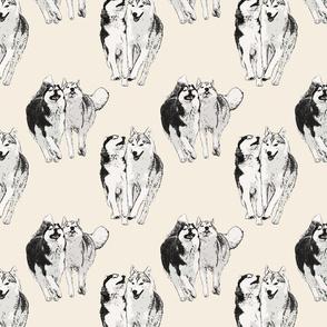Playful Siberian Huskies - sepia