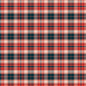 Plaid Blue Red Pink Small