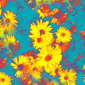 Daisies in Three colors
