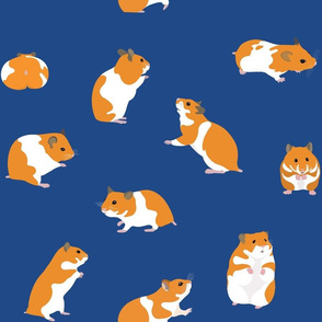 Golden Hamsters on Blue - large scale