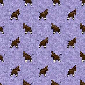 Okapi on hydrangea